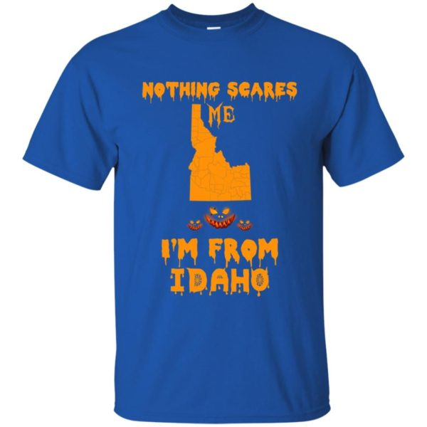 image 283 600x600 - Halloween: Nothing Scares Me I'm From Idaho shirt, hoodie, tank