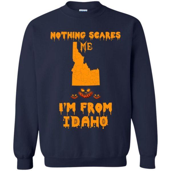 image 290 600x600 - Halloween: Nothing Scares Me I'm From Idaho shirt, hoodie, tank