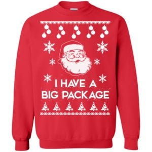 image 1716 300x300 - I Have a Big Package Christmas Sweater, Ugly Sweatshirt