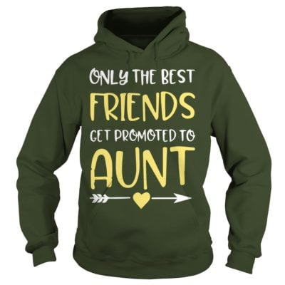 Only The Best Friends Get Promoted To Aunt hoodie 400x400 - Only The Best Friends Get Promoted To Aunt shirt, ladies tee