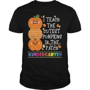 I Teach The Cutest Pumpkins In The Patch Kindergarten t shirt 300x300 - I Teach The Cutest Pumpkins In The Patch Kindergarten shirt, hoodie