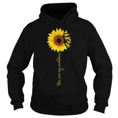 You are my sunshine sunflower t rex shirtv 400x400 - You are my sunshine sunflower T-Rex shirt