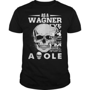 Skull as a Wagner Ive only met about 3 or 4 people that understand shirt 300x300 - Skull as a Wagner I've only met about 3 or 4 people that understand shirt