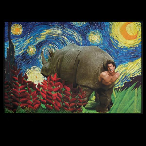 redirect 177 600x600 - Rhino Scene Ace Ventura Starry Night poster, canvas