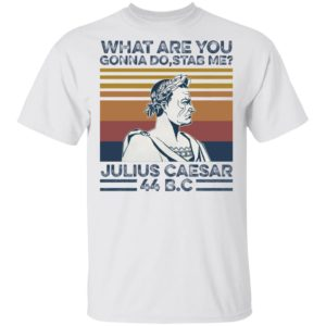 redirect 2038 300x300 - What are you gonna do stab me Julius Caesar 44 B.C shirt