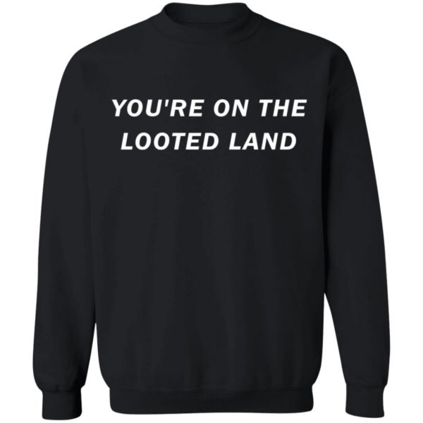redirect 3213 600x600 - You're on the looted land shirt