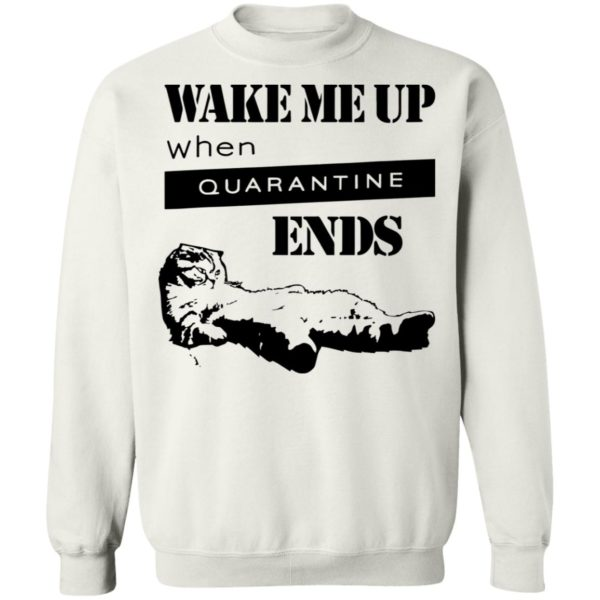 redirect11242020041125 7 600x600 - Tired cat says wake me up when quarantine ends shirt